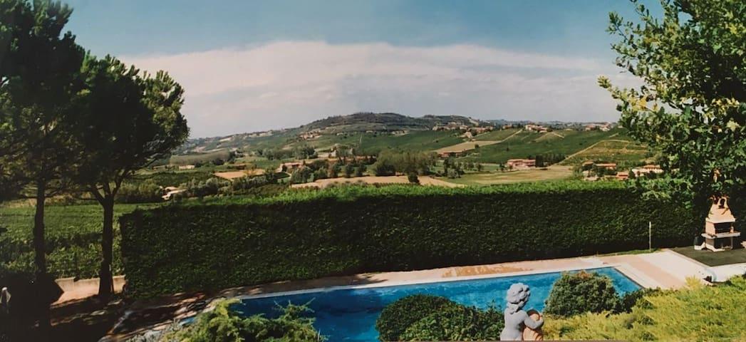 Villa Luigi-swimmingpool and views upon vineyards