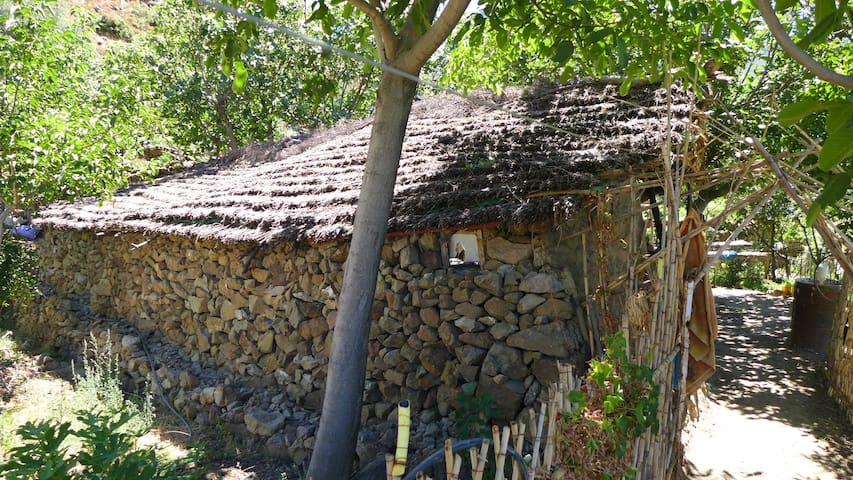 An ecologic house, with organic food and fresh air, up in mountains of chefchouen, incredible landscapes and clear skies at night. You would experience nature itself in this place, you are in SOMMET NATUREL