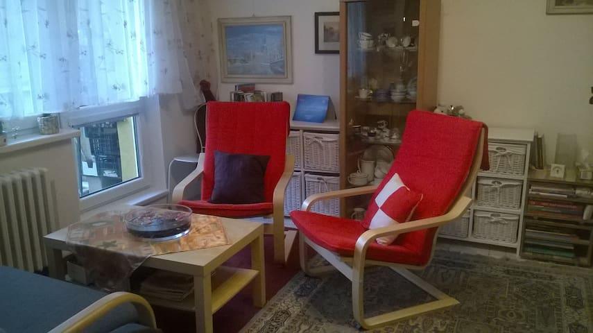 Byt v klidné lokalitě ale vše blízko - Ostrava - Apartment