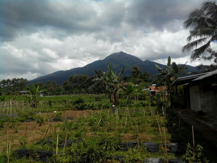 View Gunung Salak