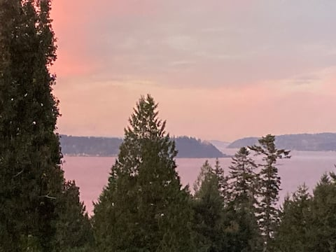 Dog-Friendly Puget Sound View Home on 6 Acres