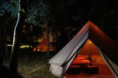Private room 2p all incl near Tomorrowland Belgium - Boom - เต็นท์
