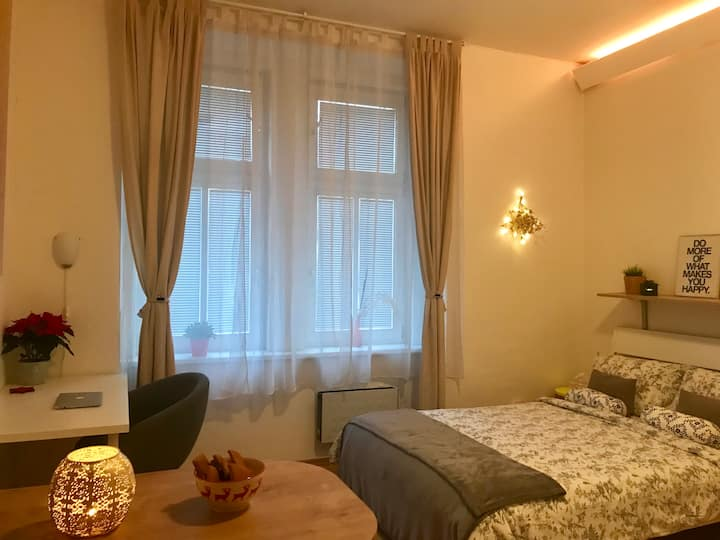 Bright and cozy studio 15 minutes to city center