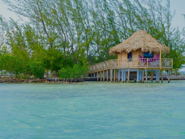 Thatch Caye - Premier Overwater Bungalow