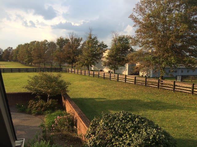 Bluegrass Bungalow on working horse farm