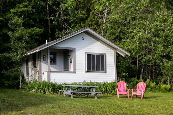 Stay-At-The-Lake Rustic Willoughby Cabin