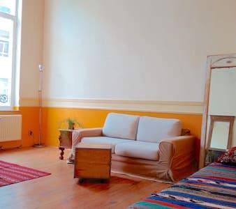 Appartement meublé, bien situé. - Ixelles - Wohnung