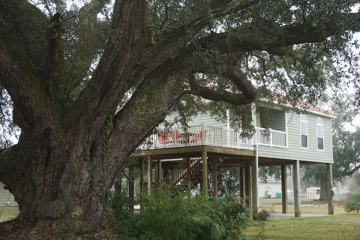 Ivy Vista - Gulfport - Rumah