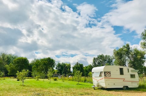 Vintage Shasta, Orchard, Peaceful, Get-Away Stay