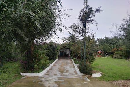 Casa de campo Álamos, un lugar para descansar. - Utrera
