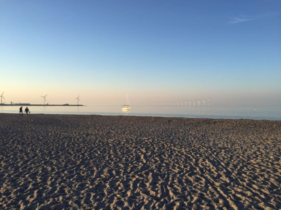 Amager strand - the beach