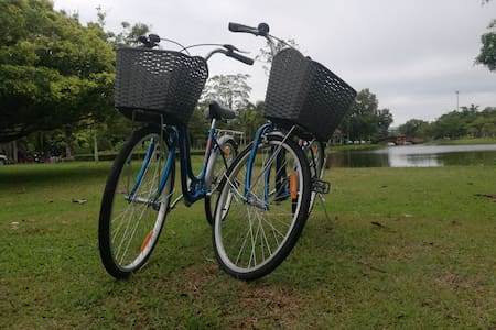 Ride the bike of the city