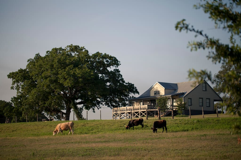 Starhill farms ranch house case in affitto a new ulm for Case in stile ranch del texas