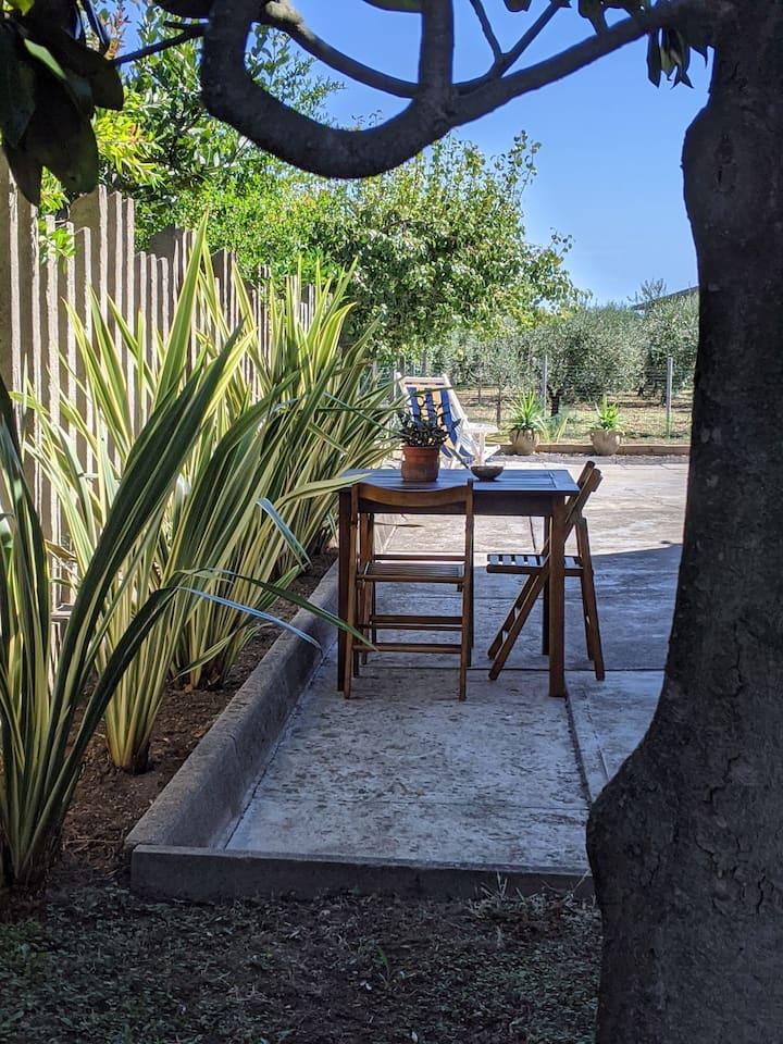 Appartamento in Villa tra ulivi e querce