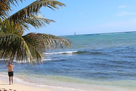 EXCLUSIVE CENOTE & BEACH PARADISE! - Loft