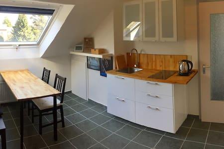 gemütliche DG-Wohnung - Detmold - Radhus