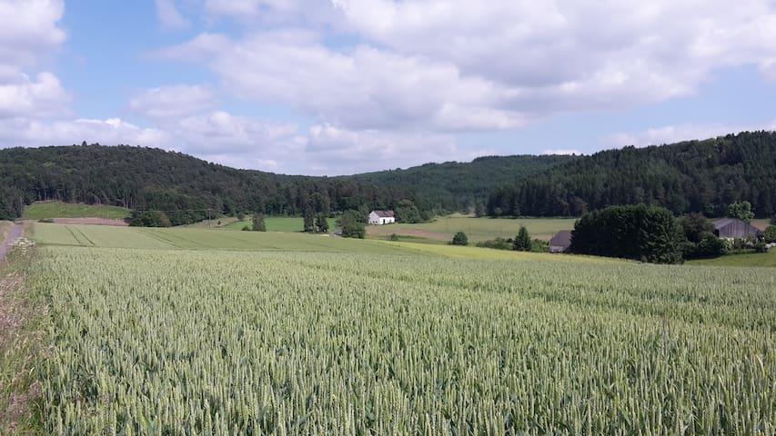 Bauernhaus Hahn