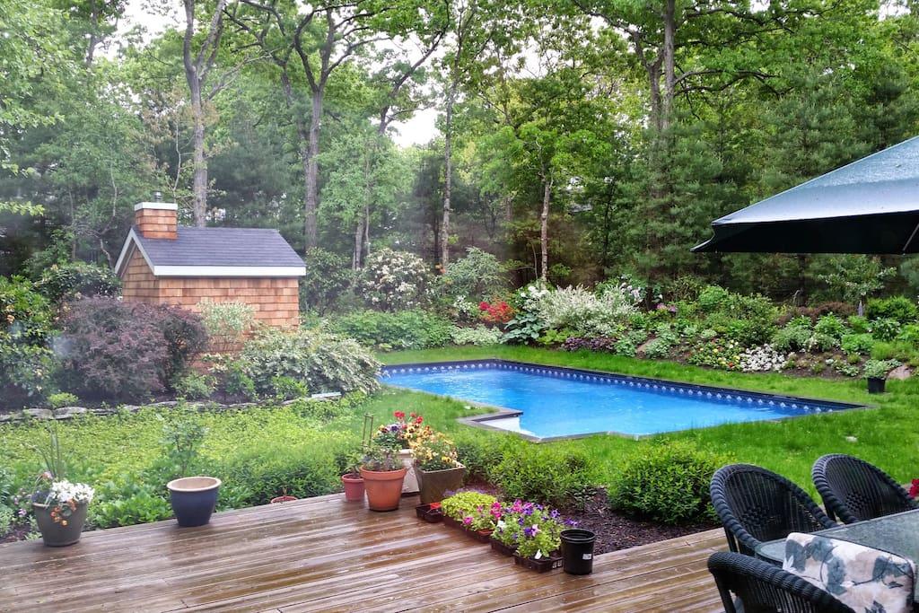 Overview of Deck, Garden & Pool