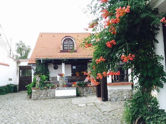 Cozy Apartment at The Country Hotel / Transylvania - Hărman - Byt