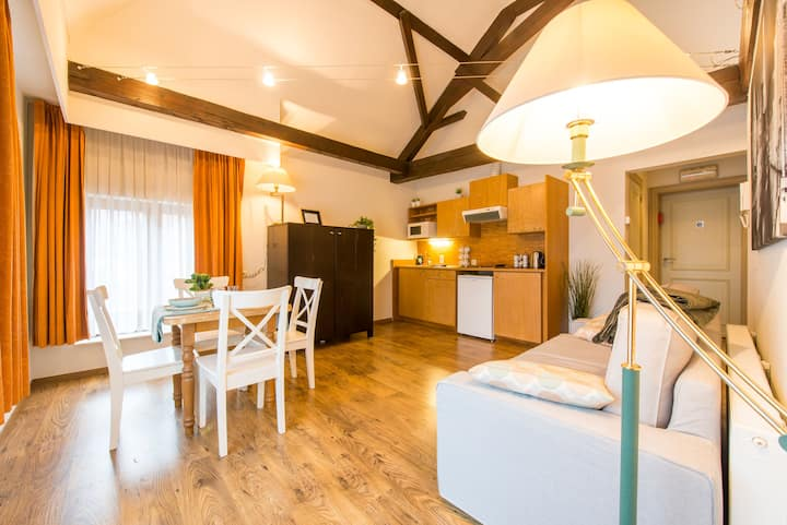 Spacious flat in the historical center w. elevator