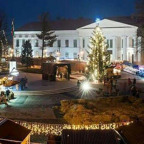 Béla király tér Szekszárd - Szekszárd - House