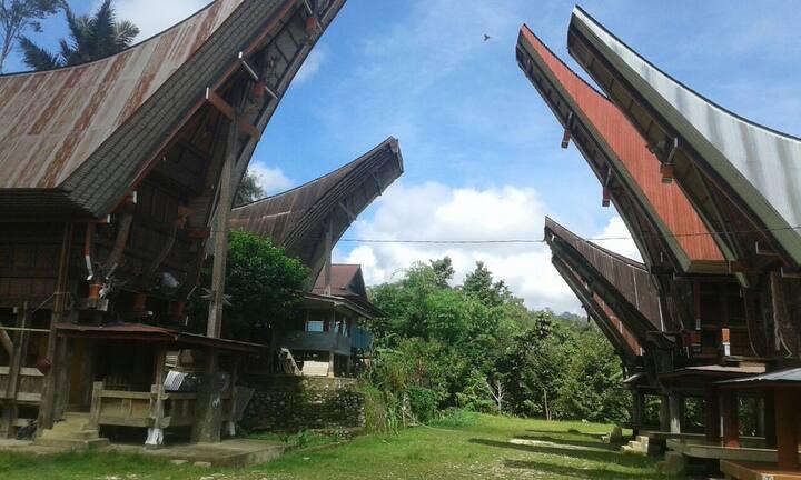Tongkonan Talodok.rumah perahu tradisional toraja