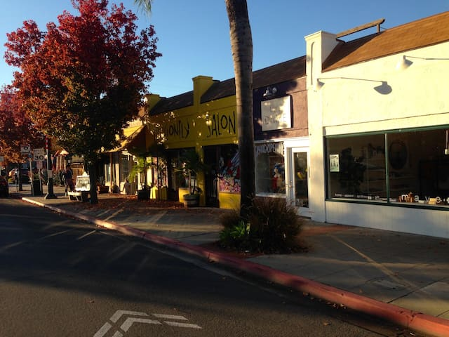 Adams Avenue (shops, bars, and cafes) - very walkable