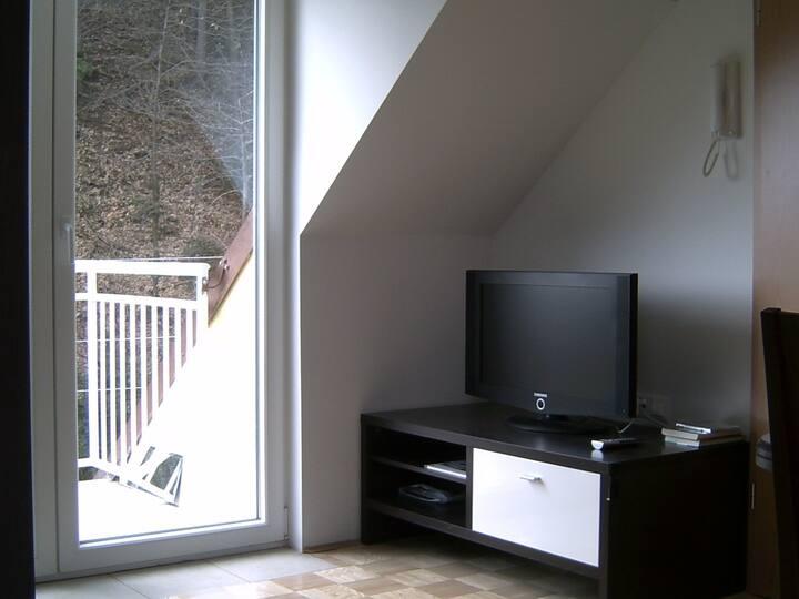 Unterdach Apartma mit Balkon