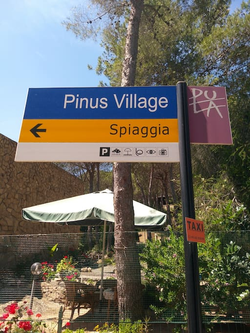 Pinus Village