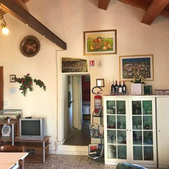 Apartment with one bedroom in Montenero di Bisaccia, with wonderful mountain view and furnished balcony - 10 km from the beach