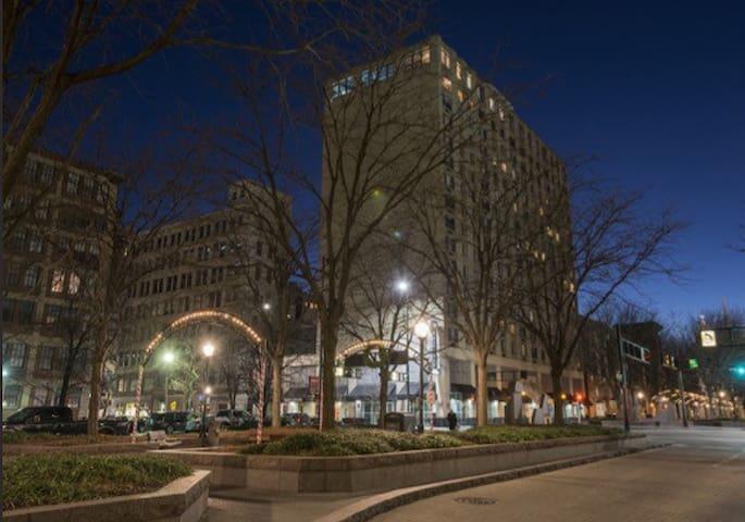 Great Large 1bdrm-Downtown Cincinnati ❤ Of it All!