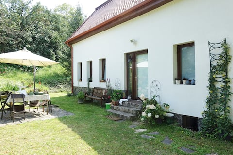 Traditional  house with garden in Transylvania