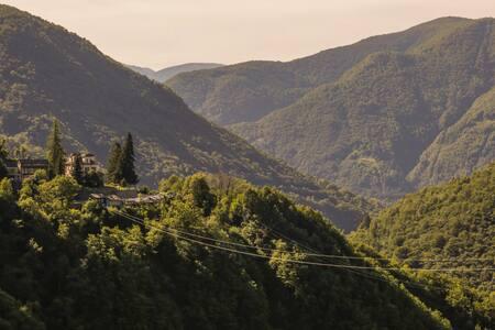 Wild Valley Village Life Apartment
