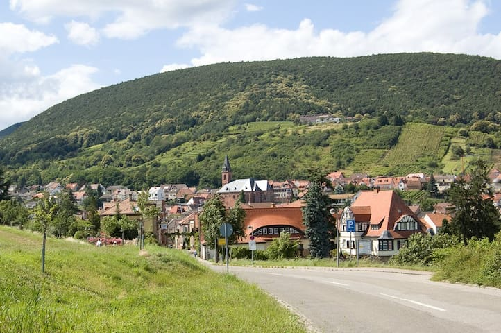 Wohnen in der Toskana Deutschlands - Sankt Martin - Appartement