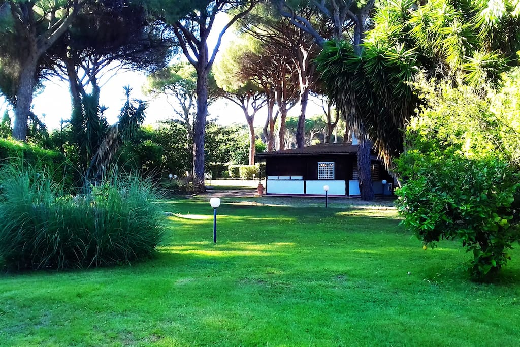 The marvellous Ceri Segret Garden, only 20 minutes from Rome