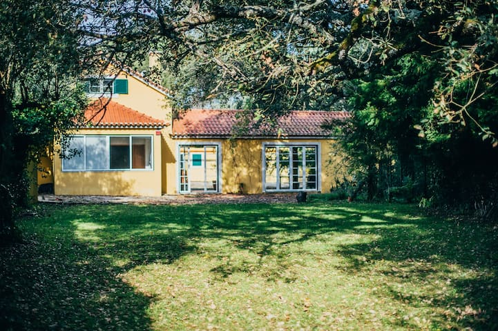 Country house ideal for family and friends - Vidais - Villa