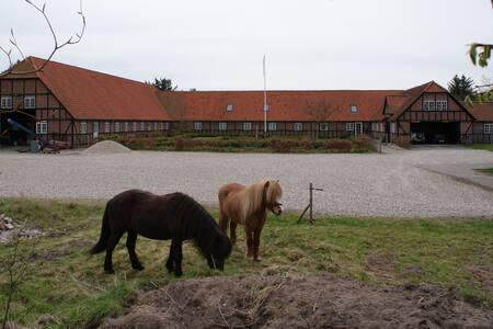1 Hyggelig gård nær Nationalpark Thy