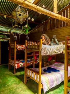 Bed in 8 bed dorm Mariposa - San Juan La Laguna