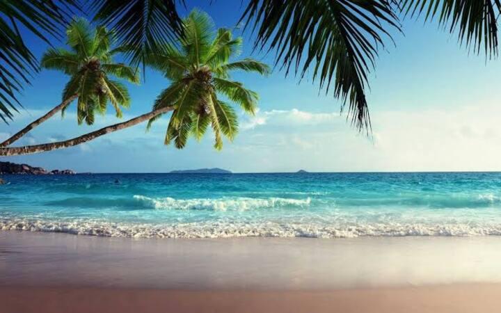 Sun-Kissed Holidays, Candolim, Goa- Ivory 🦢