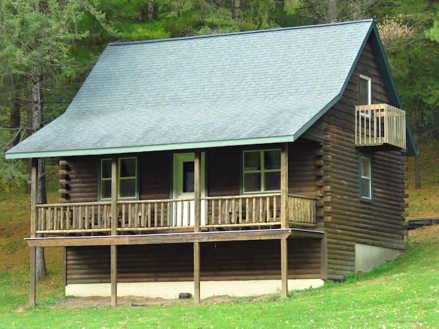 Modern Log Cabin #3