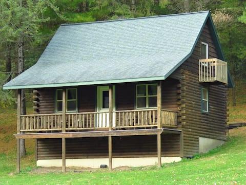 Modern Log Cabin #1