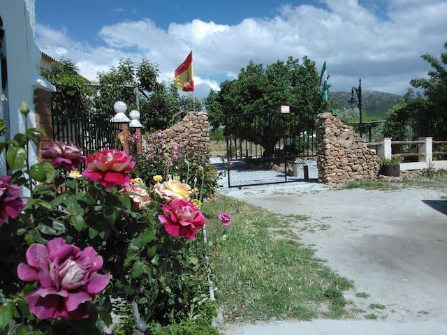 Casa Rural Cortijo los Soledad - Cúllar - Dům