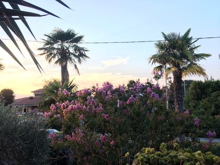 Casa vacanze in Toscana  OTTOBRE E CAPODANNO!