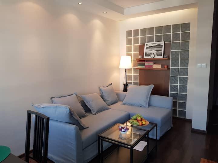 Comfortable apartment + garage
