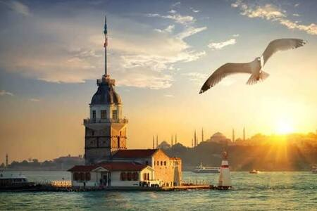 I will also help you to get to know Istanbul