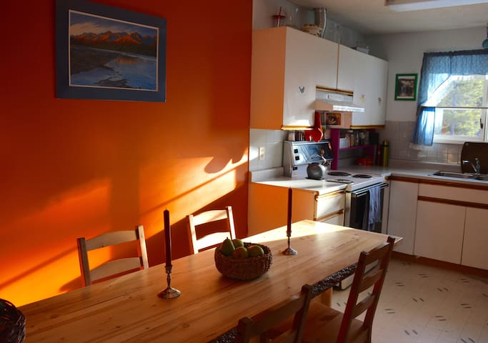 Cozy Main Floor with Woodstove near Yukon River - Whitehorse