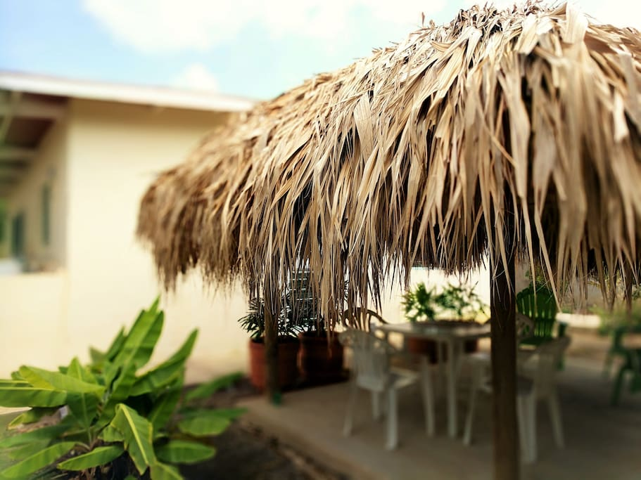 PALAPA AND BANANA GROVE IN BACK OF COTTAGE, COMPLETE PRIVACY