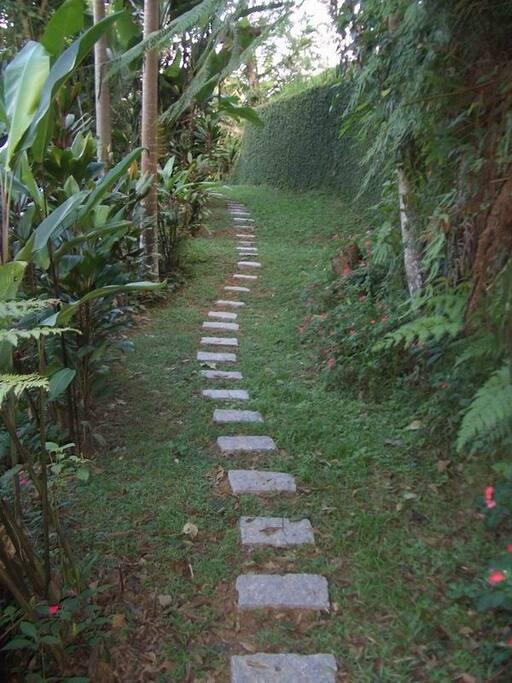 Uma das trilhas pitorescas
