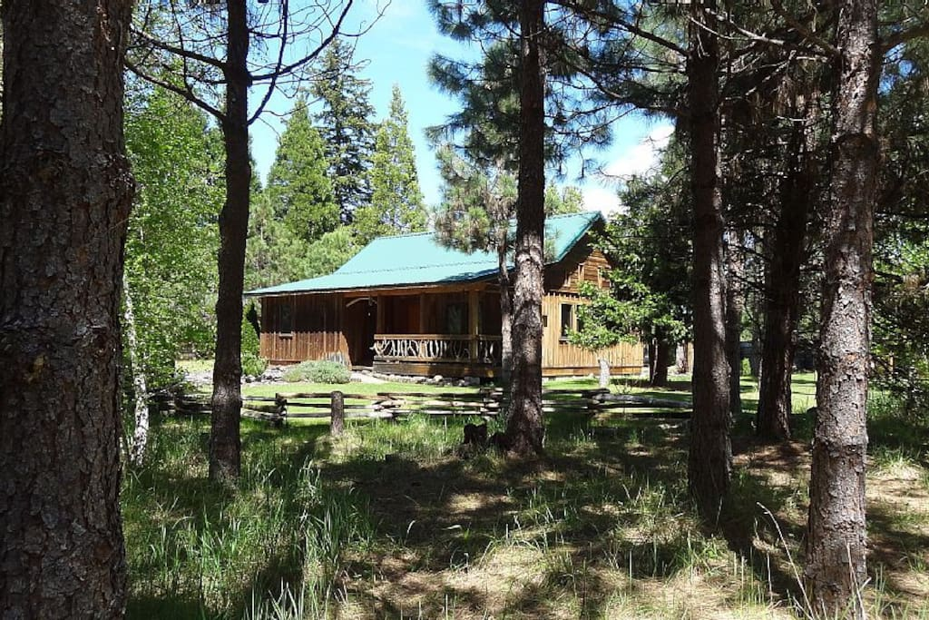 Cabins Near Crater Lake Two Queen Beds