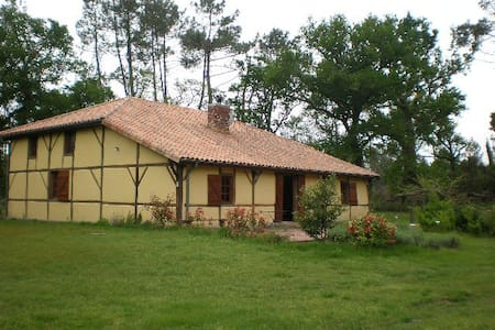 Chalou gem in the middle of the forest Les Landes - Hus